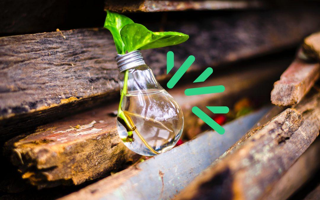 Le matériau bois au cœur de l'innovation – Regards croisés des scieurs