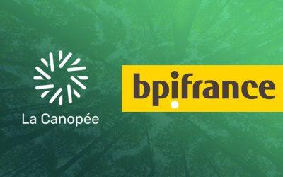 Bpifrance sera au jury National du concours d'innovation pour la forêt et le bois La Canopée.